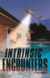 Intrinsic Encounters _ Book Cover